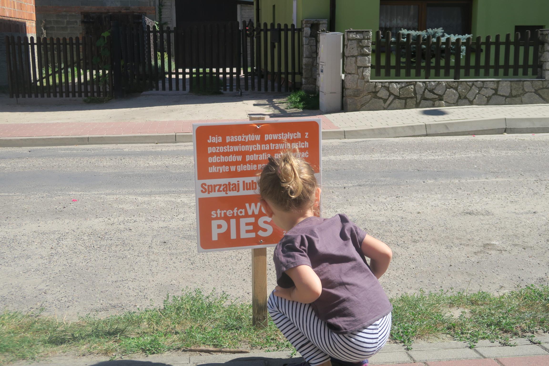 Co grozi naszym dzieciom podczas zabawy w parku?