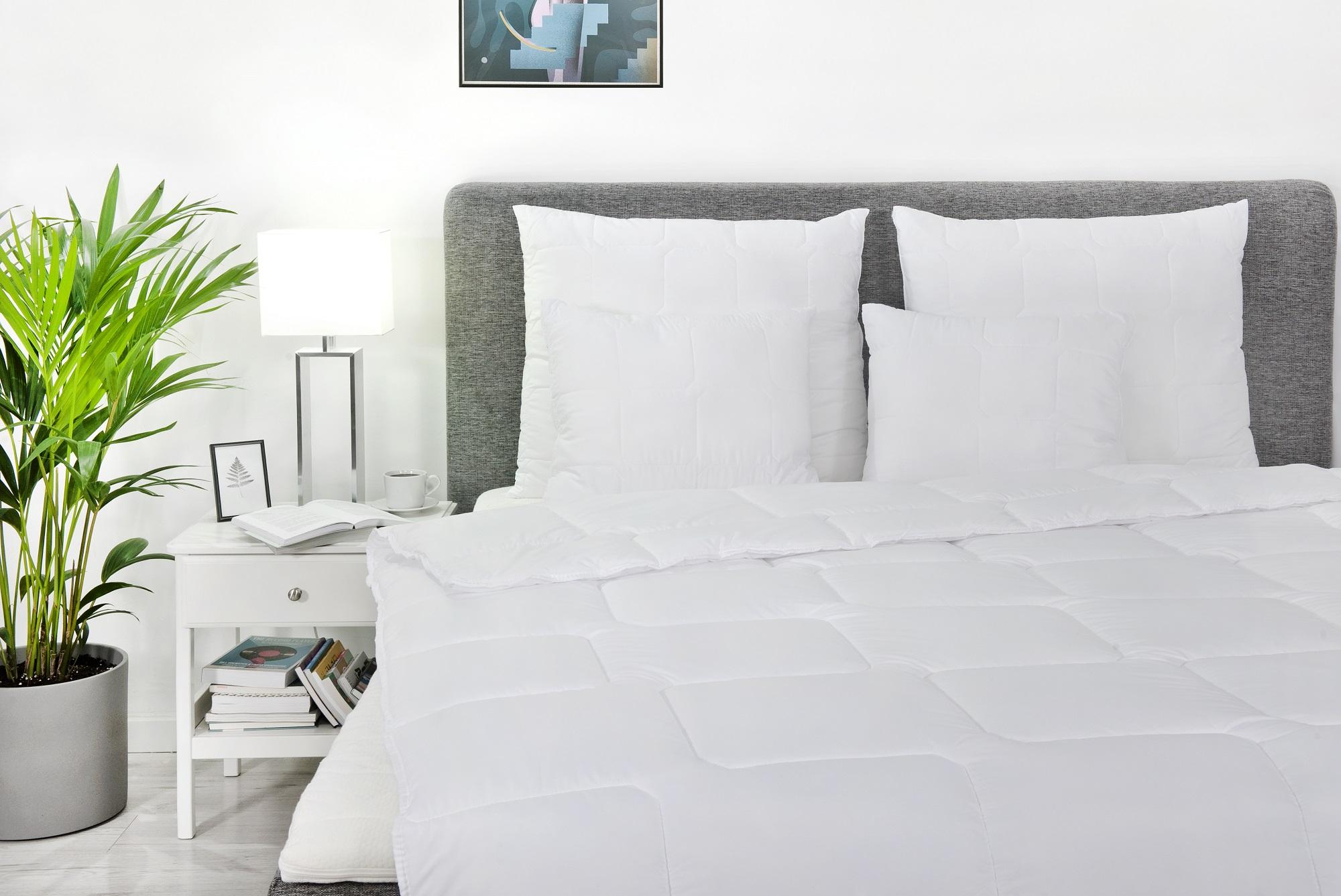 Chroń swoje łóżko przed niechcianymi gośćmi